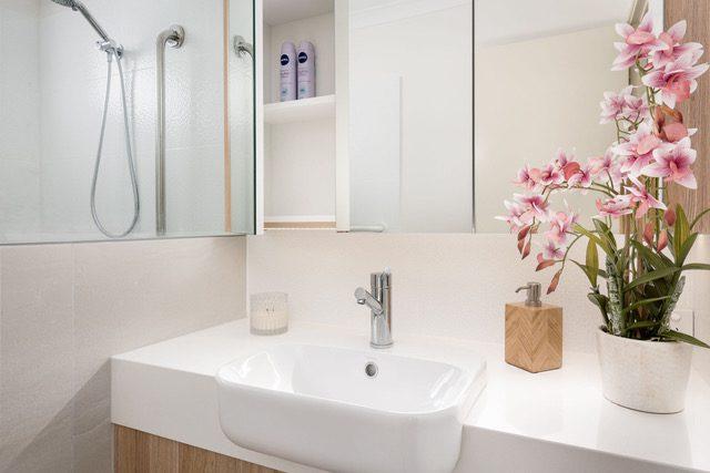mirror-cabinet-single-vanity
